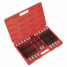 Image for TRX-Star/Spline/Hex/Ribe Socket Bit Set 22pc 1/2